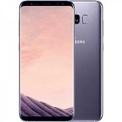 Samsung S8 Plus (G955)